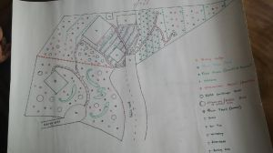 The tentative plan for our property